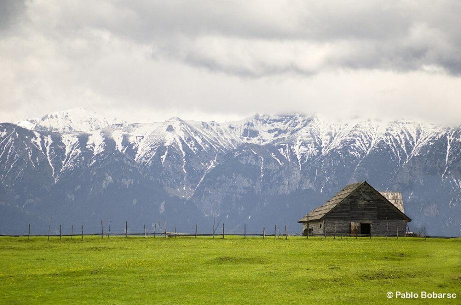 carpathians romania