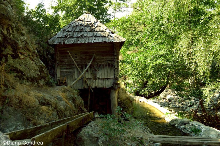 Water Mills Eftimie Murgu