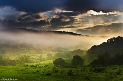 holidays-in-transylvania