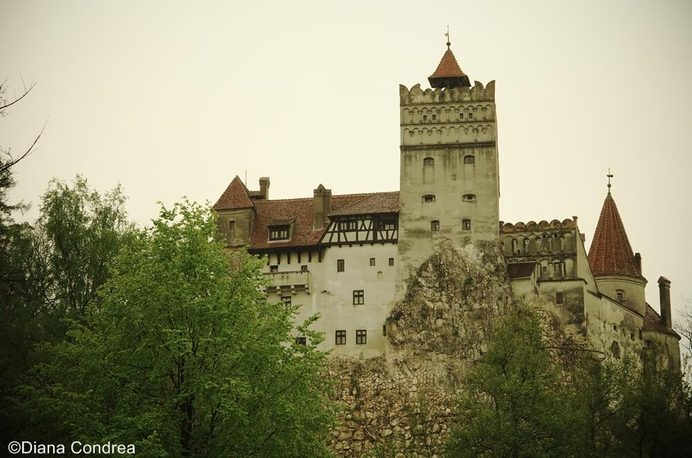 bran castle the real story of a world famous attraction