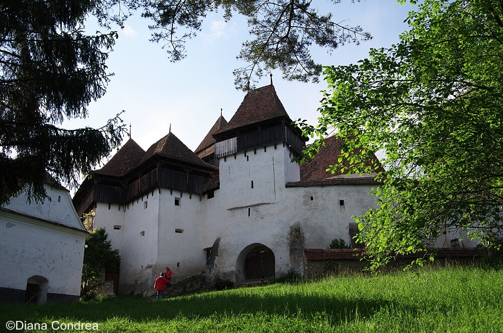 Vacations in Transylvania