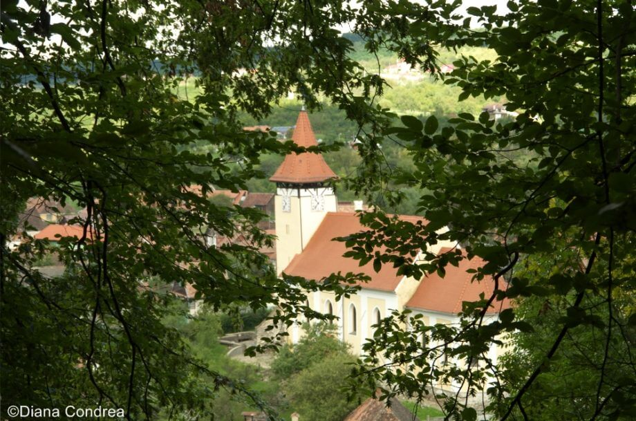 Villages in Transylvania