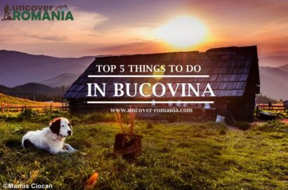things to do in bucovina