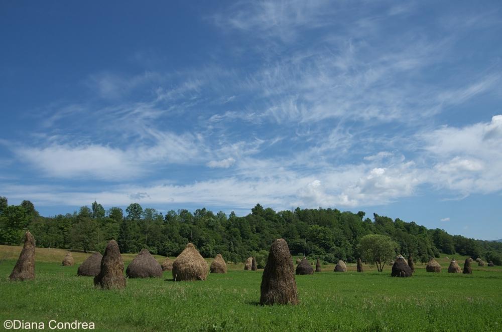 visit Maramures