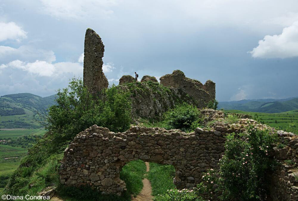 Coltesti Fortress