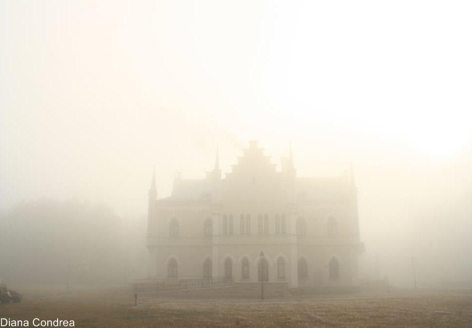 Ruginoasa-Palace