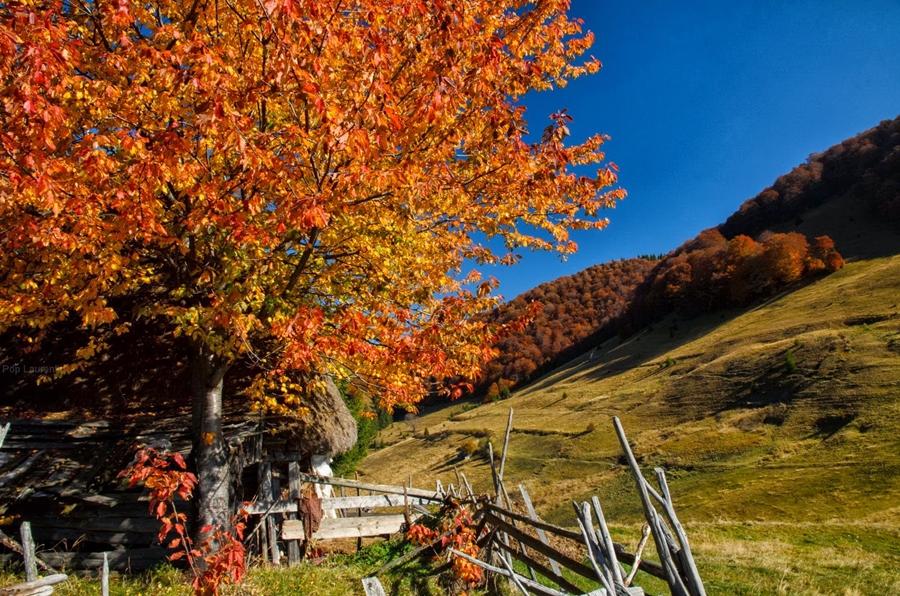 romanian_villages