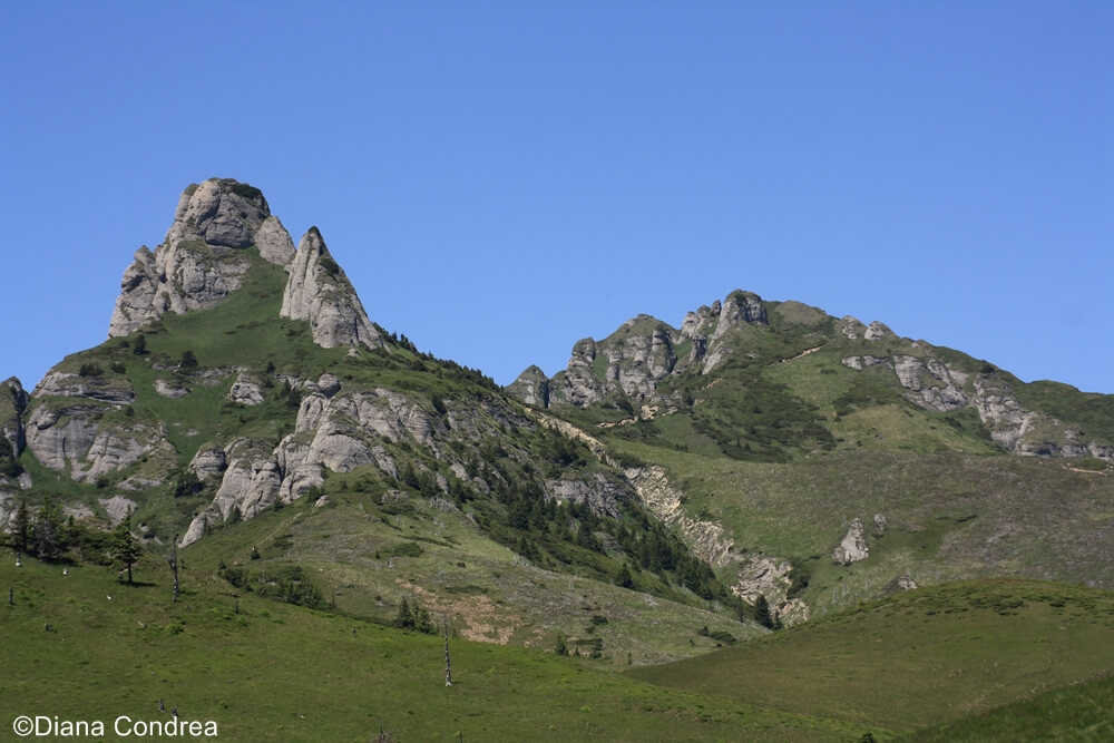 Ciucas Mountains