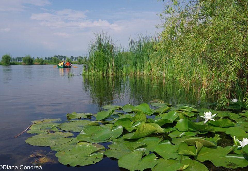 comana nature park