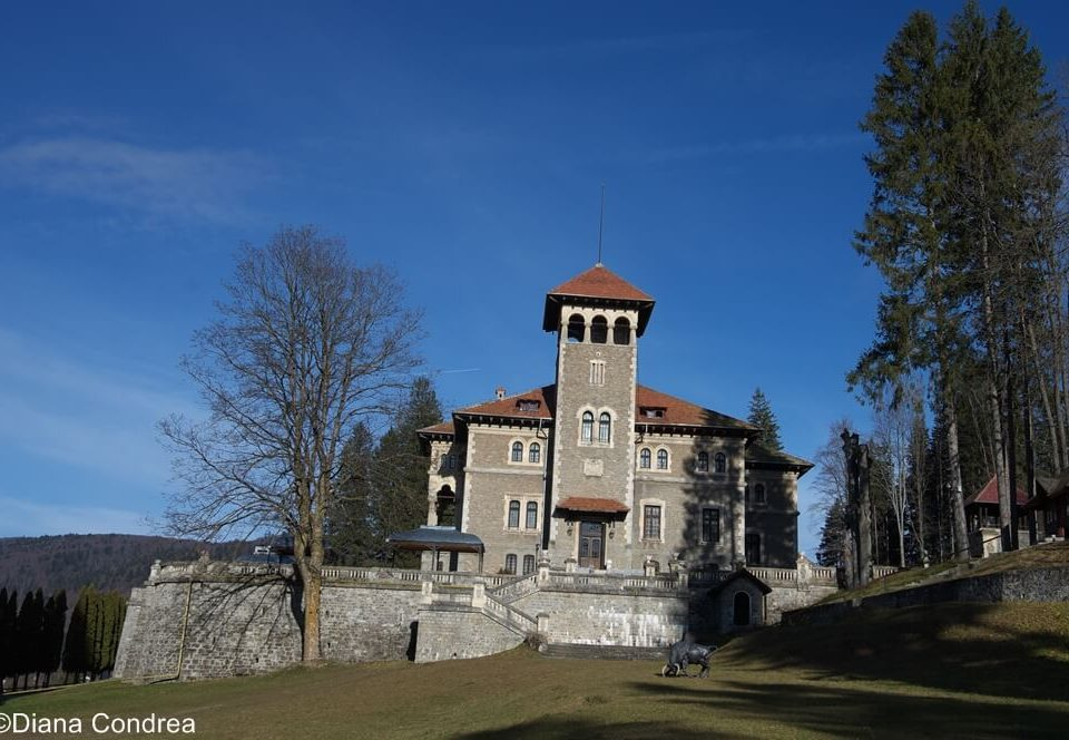 Cantacuzino Castle
