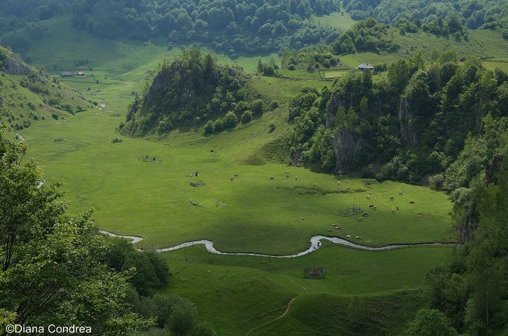 Nature In Romania: Wilderness And Breathtaking Landscapes