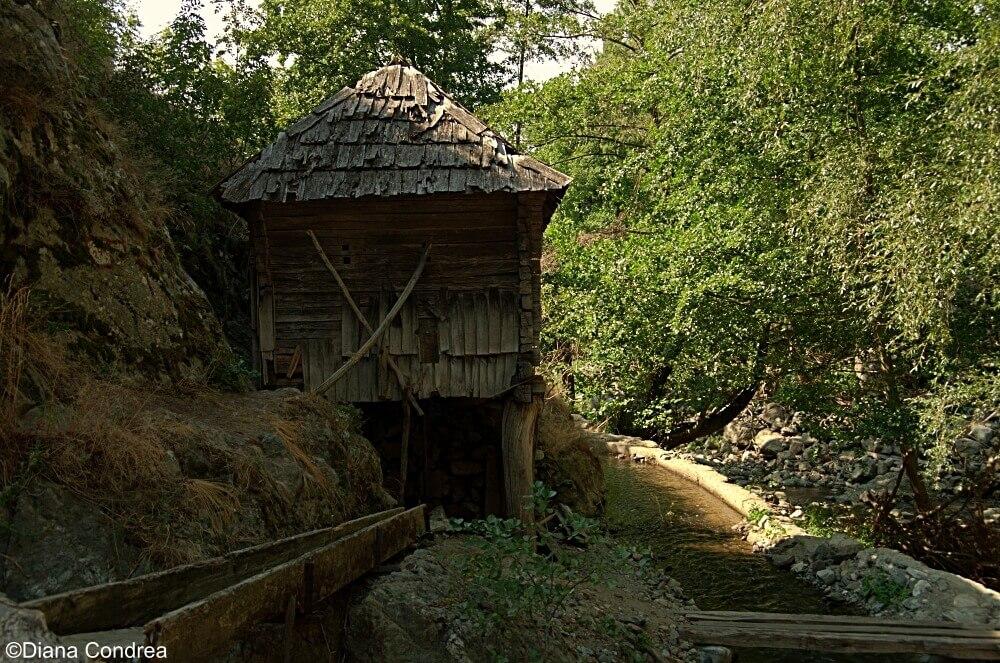 eftimie-murgu-water-mill