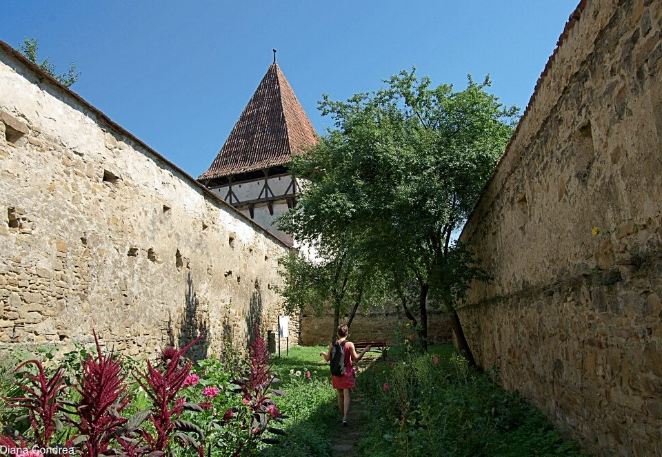 Cincsor Fortified Church