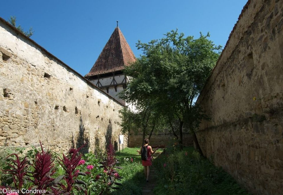 Cincsor Fortified Church @Diana Condrea