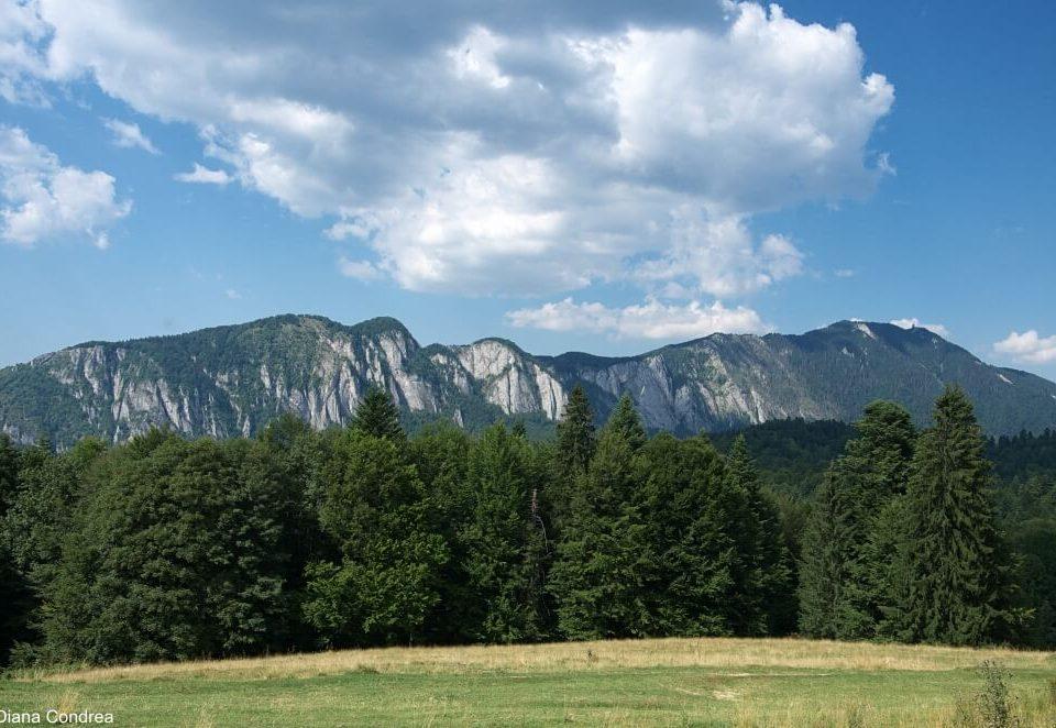 Postavaru Mountain