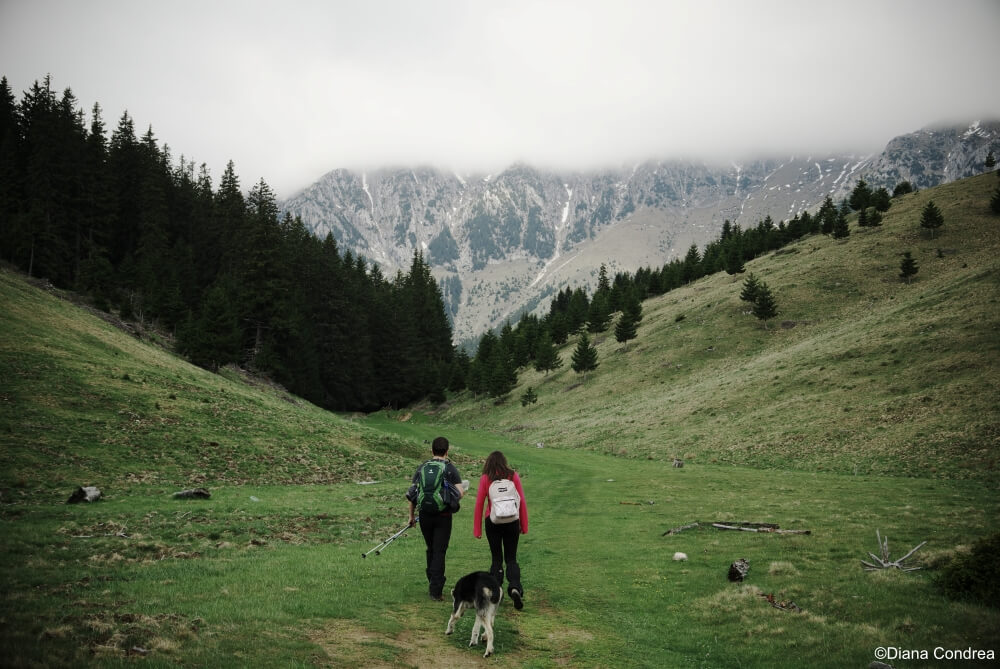family hikes in the Carpathians